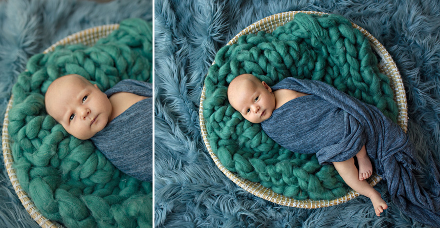 storyboard 57 little boy blue   sutherland shire newborn photographer