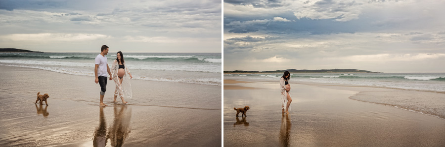 storyboard 27 little handsome billy and alfie the fur baby  sutherland shire newborn photographer