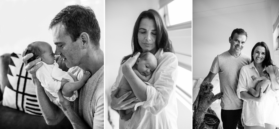 storyboard 97 little handsome billy and alfie the fur baby  sutherland shire newborn photographer