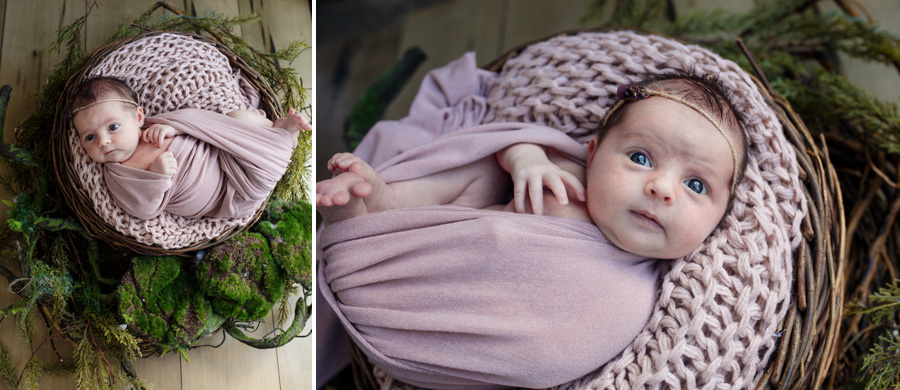 storyboard 26 pretty little missy   sutherland shire newborn photographer
