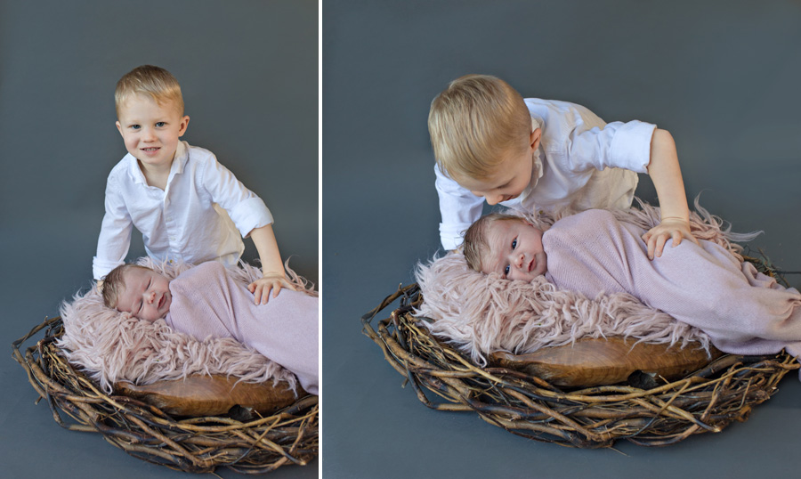 storyboard 48 little blondie   sutherland shire newborn photographer