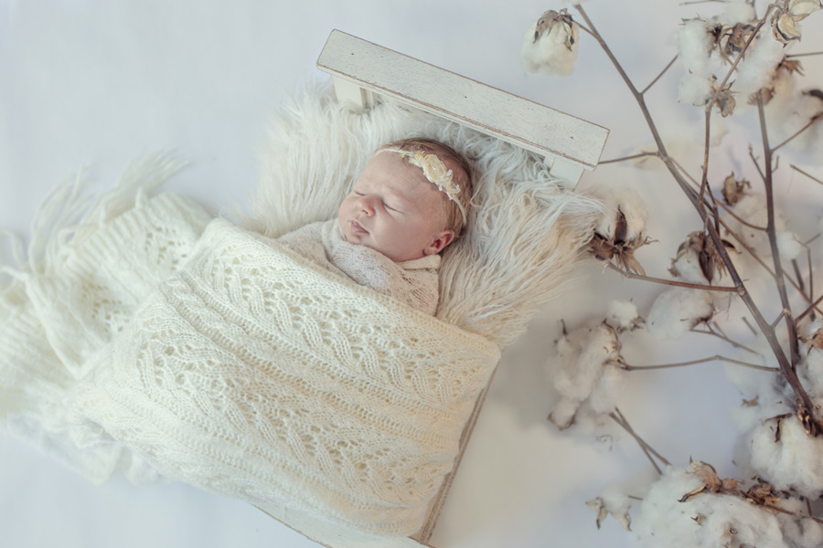 storyboard 50 little blondie   sutherland shire newborn photographer
