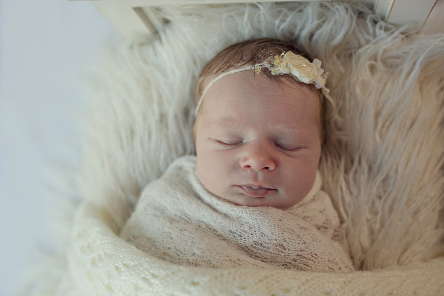 storyboard 51 little blondie   sutherland shire newborn photographer