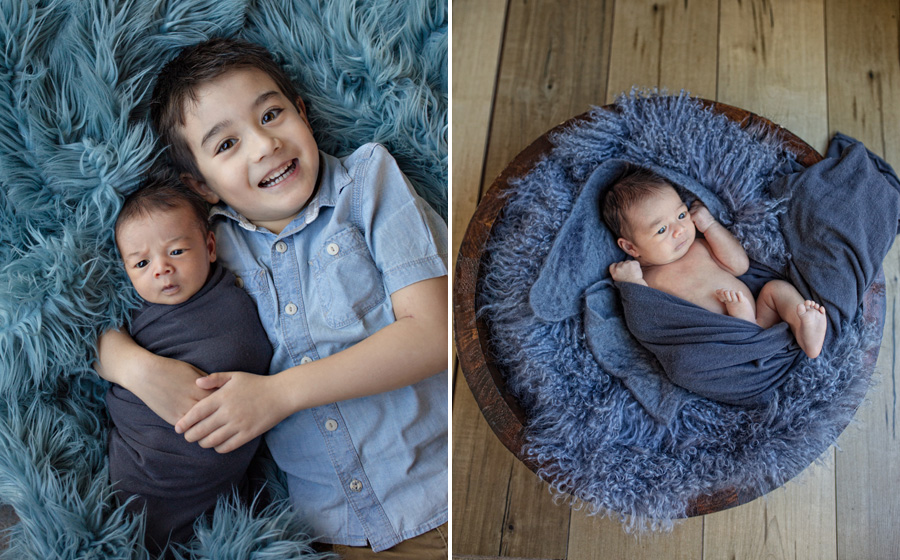 storyboard 54 handsome brothers   sutherland shire newborn photographer