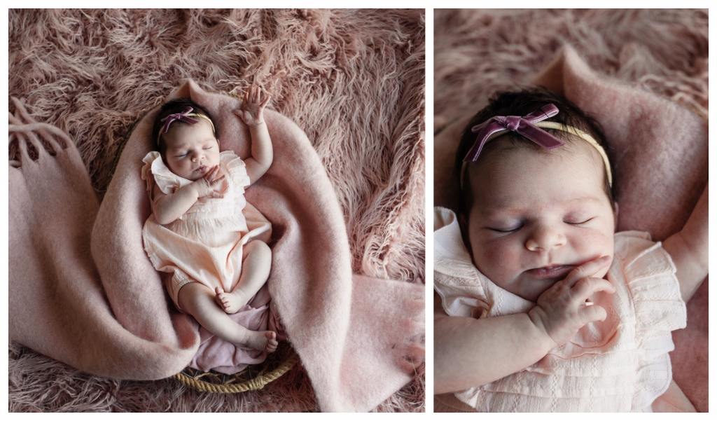 BeFunky collage 17 copy 2 1024x601 sweet   sutherland shire newborn photographer