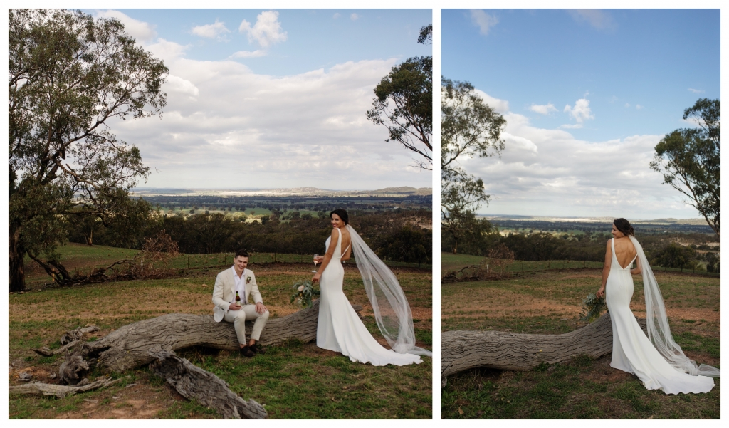 BeFunky collage 221 1024x601 Love is in the air   sutherland shire wedding photographer