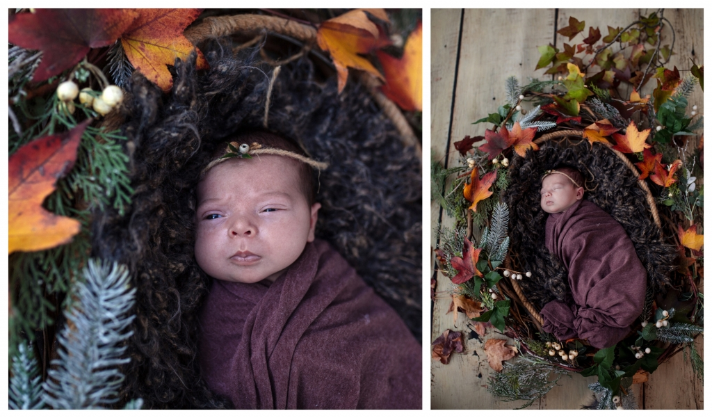 BeFunky collage 416 1024x601 little darlings   sutherland shire newborn photographer