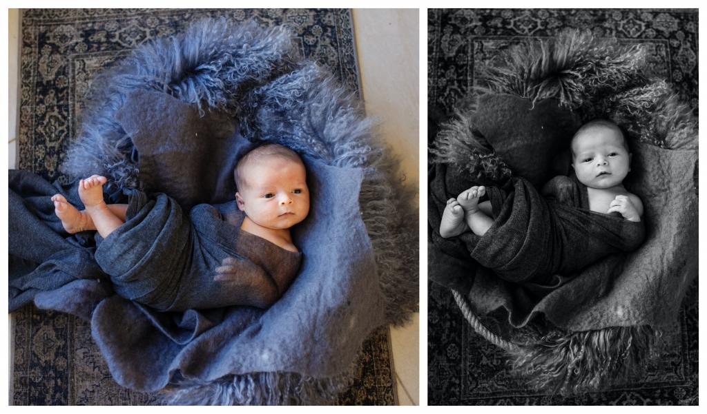 BeFunky collage 508 1024x601 alfred and william   sutherland shire newborn photographer
