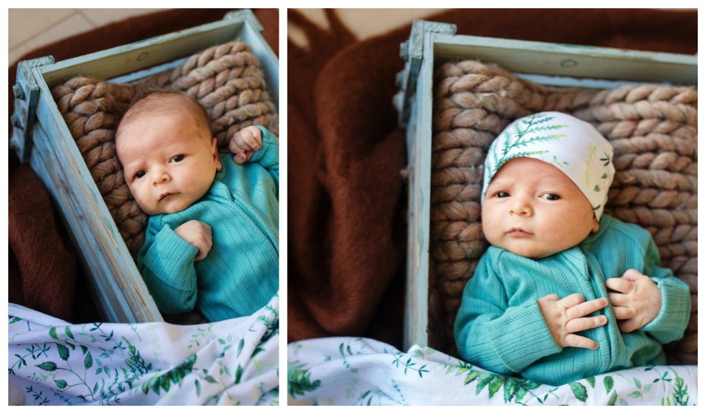 BeFunky collage 511 1024x601 alfred and william   sutherland shire newborn photographer