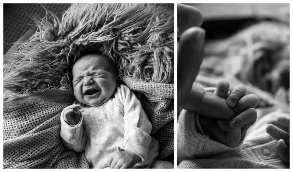 BeFunky collage 531 1024x601 my 3 sons   sutherland shire newborn lifestyle photographer
