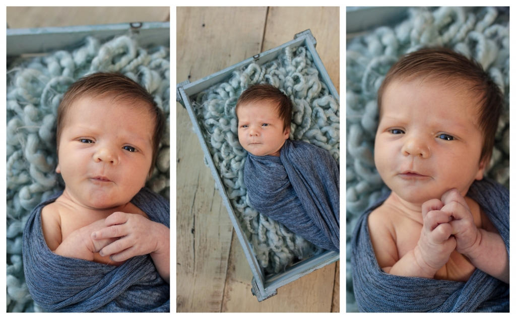 BeFunky collage 603 1024x633 much loved   sutherland shire newborn photographer
