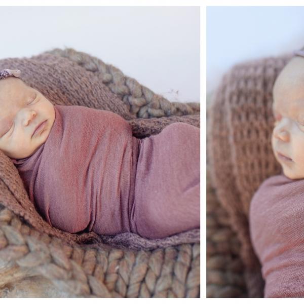 Introducing Stevie.. sutherland shire newborn photographer