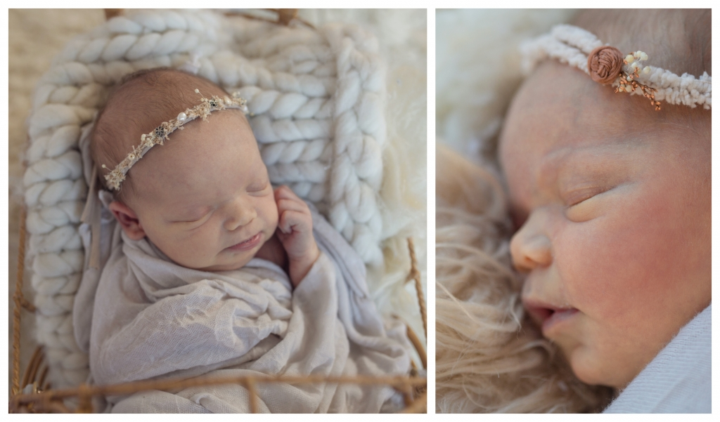 BeFunky collage alana2 1024x601 Introducing Stevie.. sutherland shire newborn photographer
