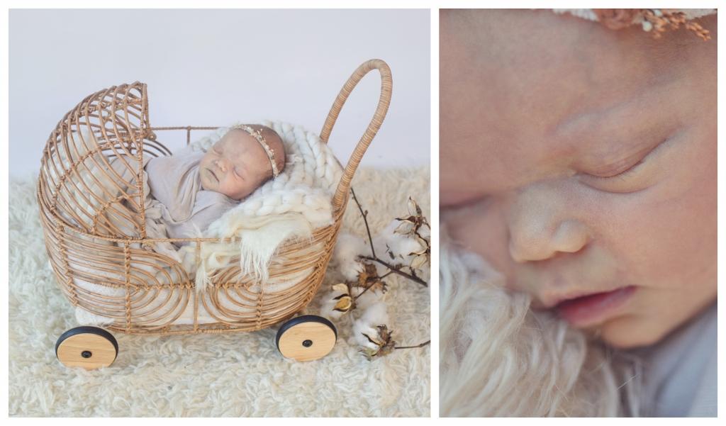 BeFunky collage alana3 1024x601 Introducing Stevie.. sutherland shire newborn photographer