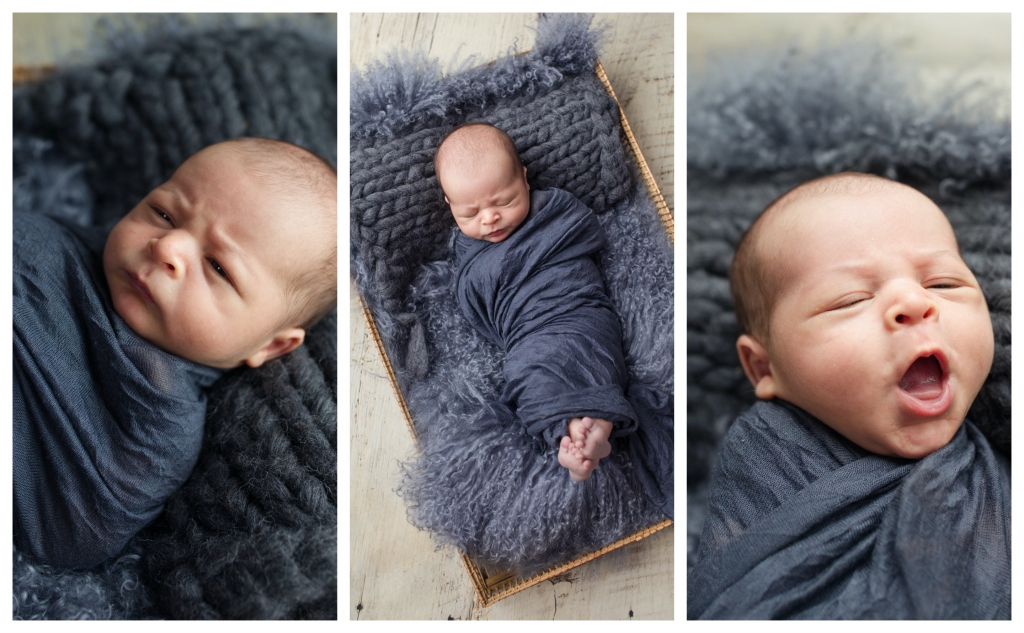 BeFunky collage 1011 1024x633 little one all 4 kilos of chubb..   sutherland shire newborn photographer