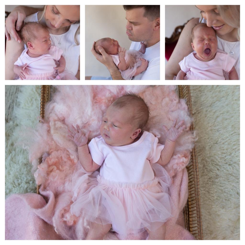 BeFunky collage 11 1024x1024 Happy new year baby girl..   Sutherland shire newborn photographer