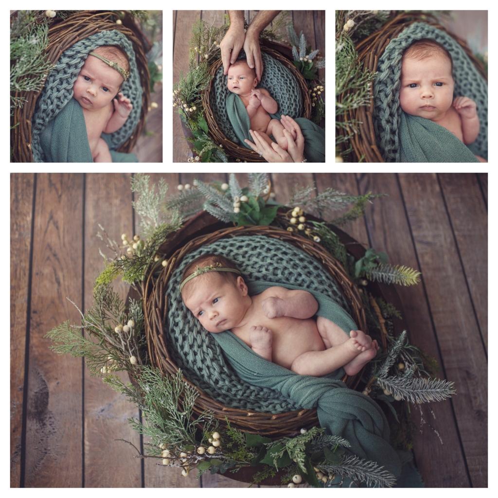 BeFunky collage 1 1024x1024 little missy   sutherland shire newborn photographer