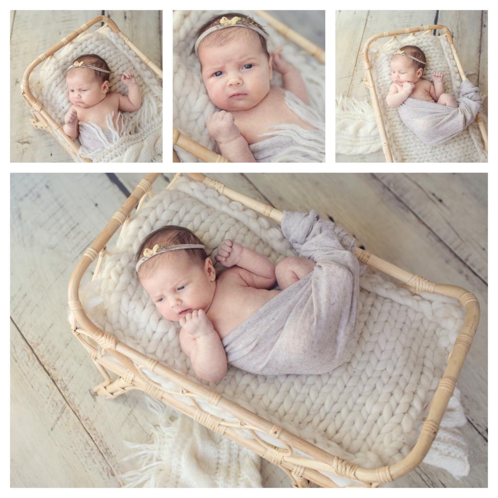 BeFunky collage 2 1024x1024 little missy   sutherland shire newborn photographer
