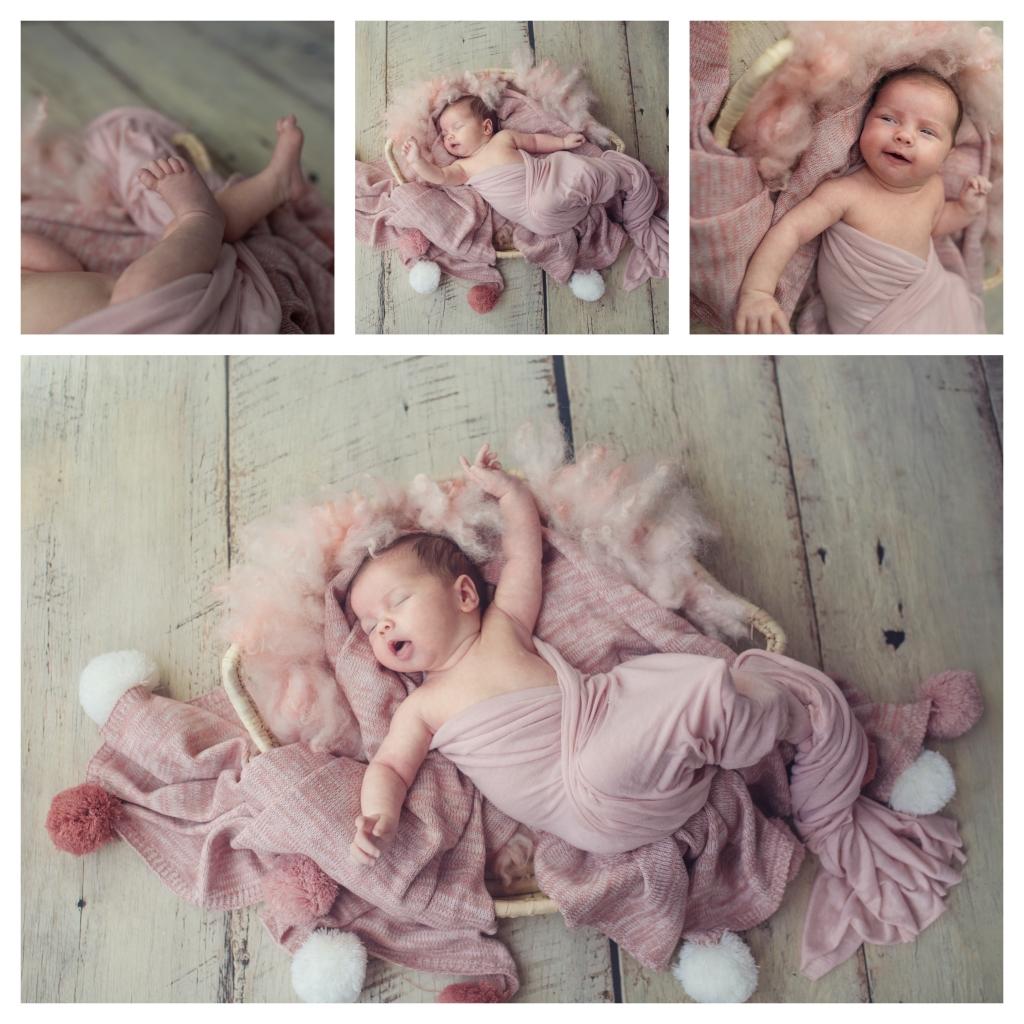 BeFunky collage 4 1024x1024 little missy   sutherland shire newborn photographer