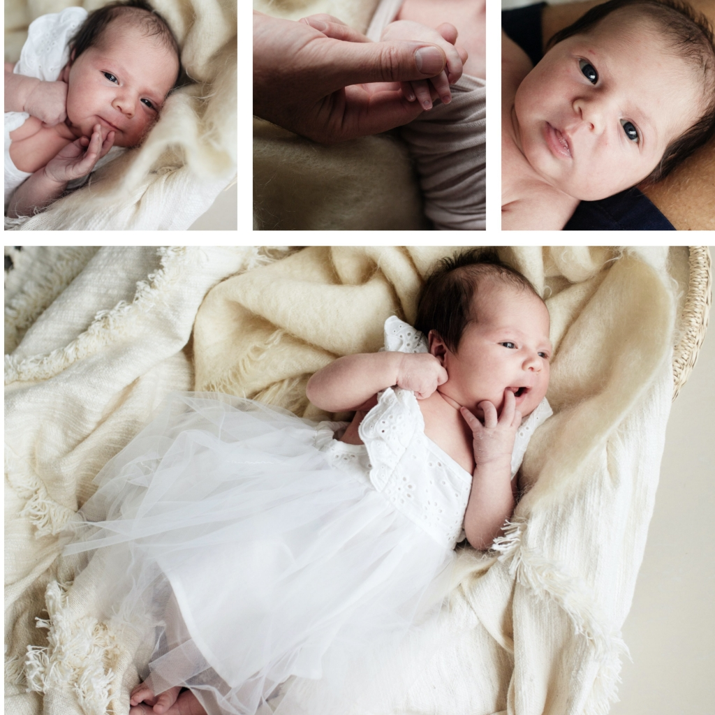 BeFunky collage 1000 2 1024x1024 blended family bliss  sutherland shire newborn photographer