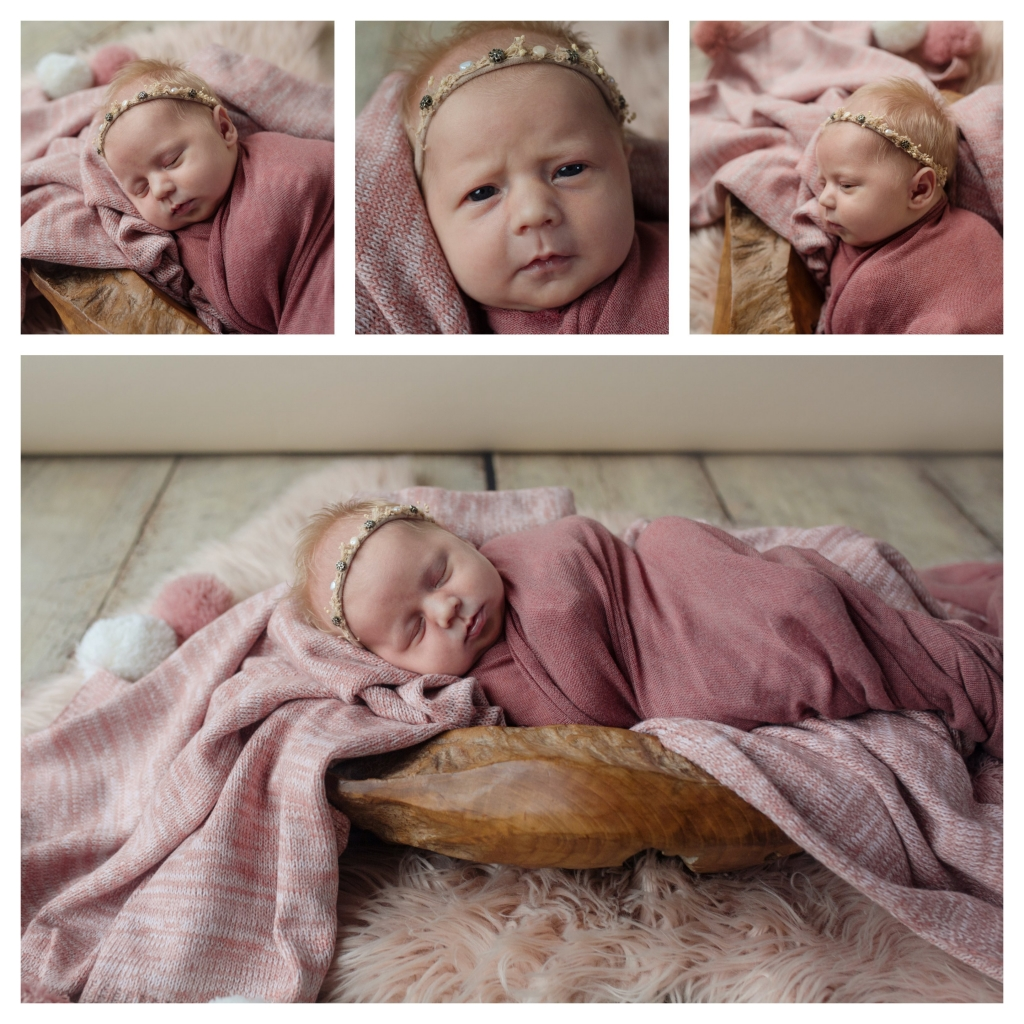 BeFunky collage 6 1024x1024 beautiful sisters   sutherland shire newborn photographers