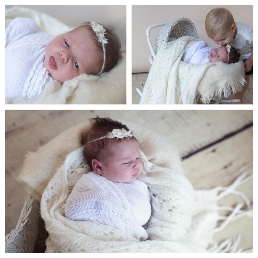 BeFunky collage 249 1024x1024 pretty   sutherland shire newborn photographer