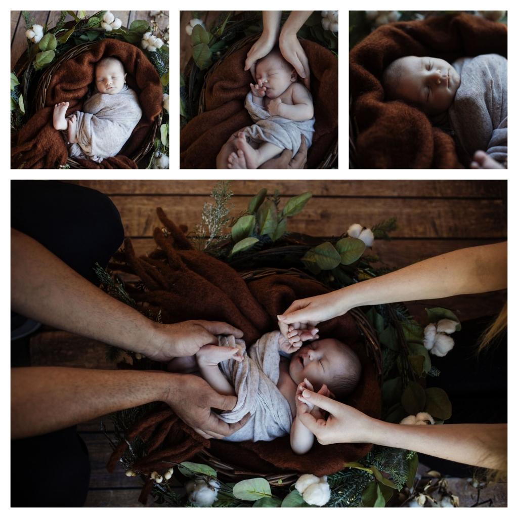 BeFunky collage 501 1024x1024 handsome   sutherland shire newborn photographer