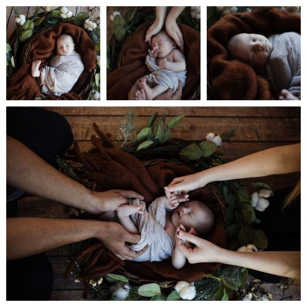 handsome - sutherland shire newborn photographer