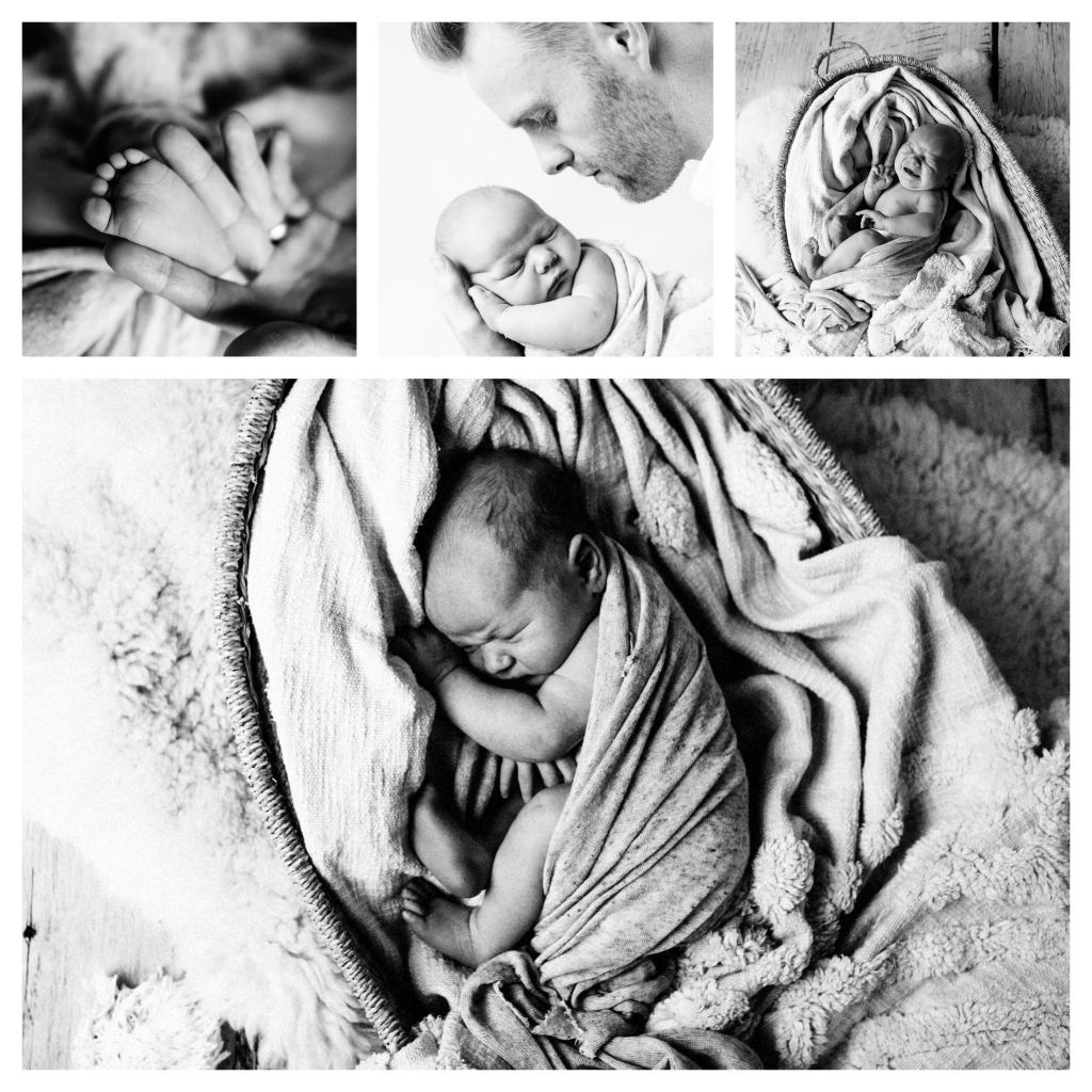 BeFunky collage easter 11991 1024x1024 cheeky brothers   sutherland shire newborn photographer