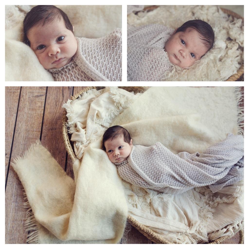 BeFunky collage 23 1024x1024 darling boy   sutherland shire newborn photographer