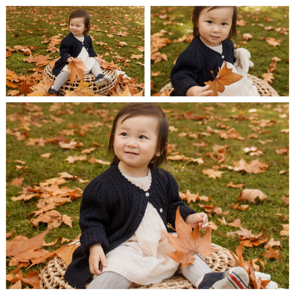 BeFunky collage 510 1024x1024 autumn magic   sutherland shire family photographer