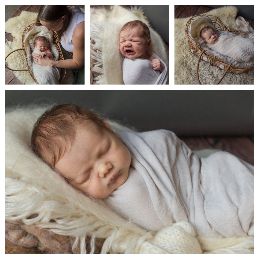 BeFunky collage 518 1024x1024 button nose   sutherland shire newborn photographer