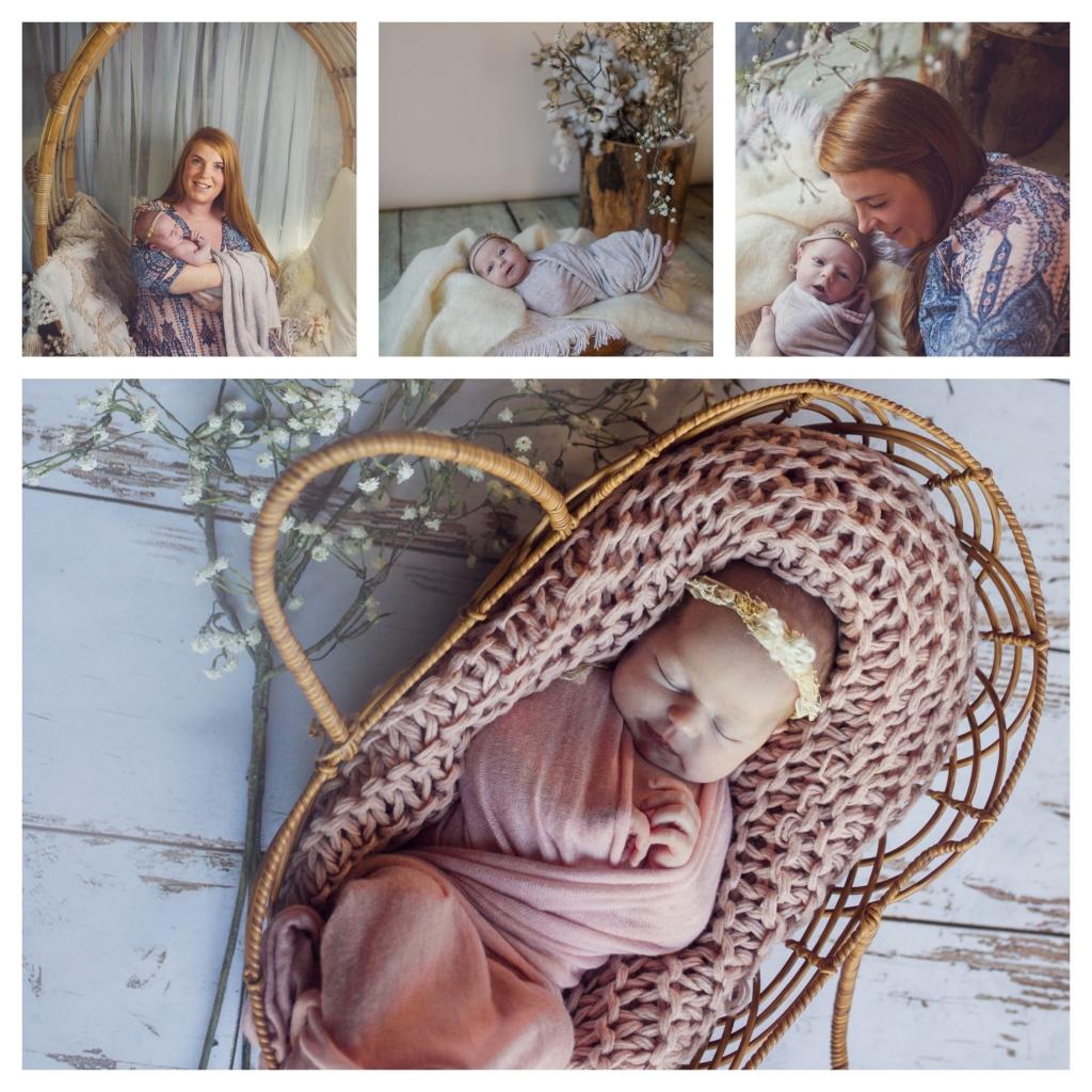 BeFunky collage 534 1024x1024 english rose   Sutherland shire newborn photographer