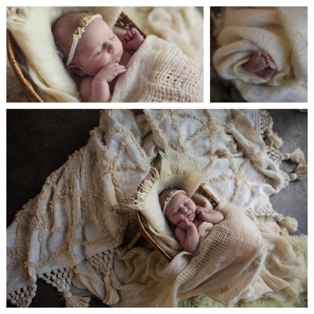 BeFunky collage 93 1024x1024 darling girl   sutherland shire newborn photographer