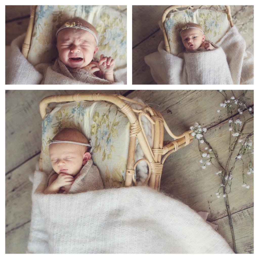 BeFunky collage 10123 1024x1024 dainty   sutherland shire newborn photographer