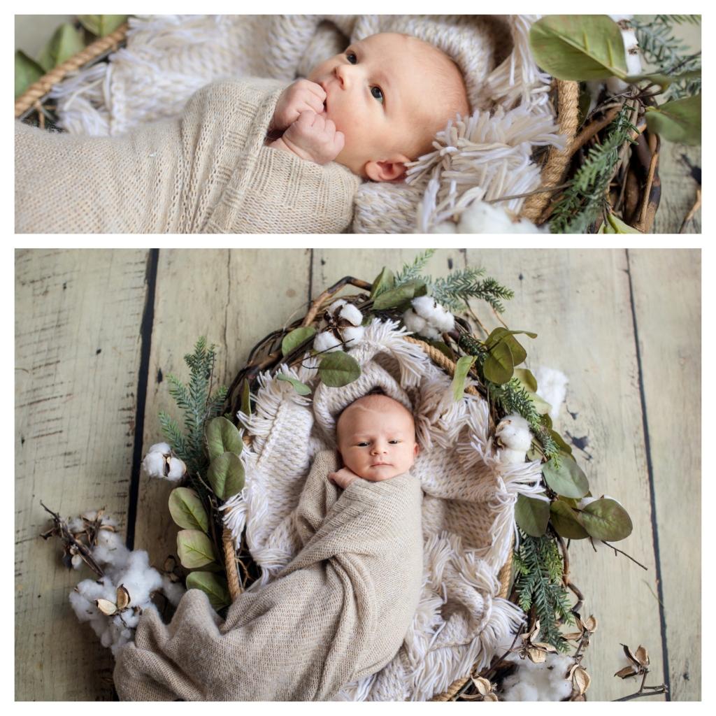 BeFunky collage 10124 1024x1024 dainty   sutherland shire newborn photographer